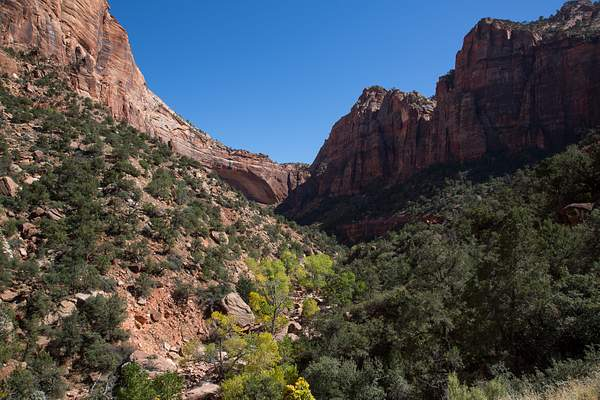 Zion Canyon-1 222