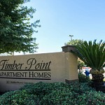 Timber Point