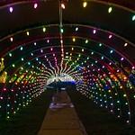 Xmas lights Strongsville 2015,16