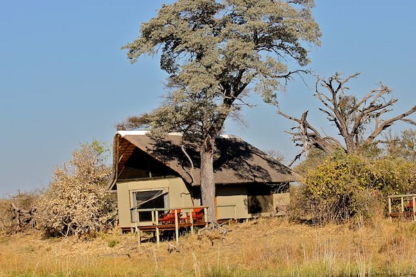 Our Tent in Linyanti by AnneMetzger