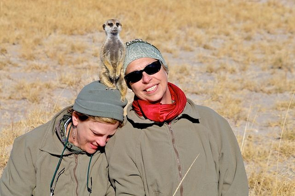 Meerkat Needs Extra Support by AnneMetzger