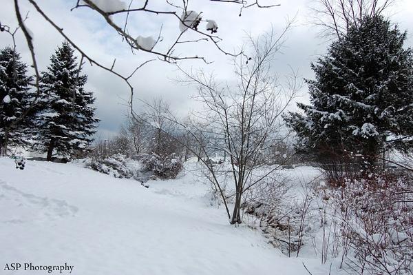 Winter 2014 by amysuephoto by amysuephoto