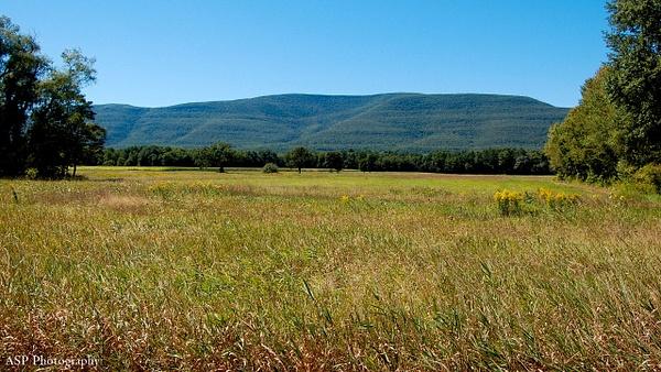 New York Vacation: Catskills, Hudson Valley, Mohonk Preserve, Summer 2014 by amysuephoto by amysuephoto