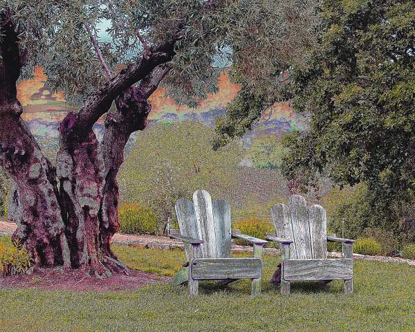 Sitting Place in Northern California's Wine Country 222