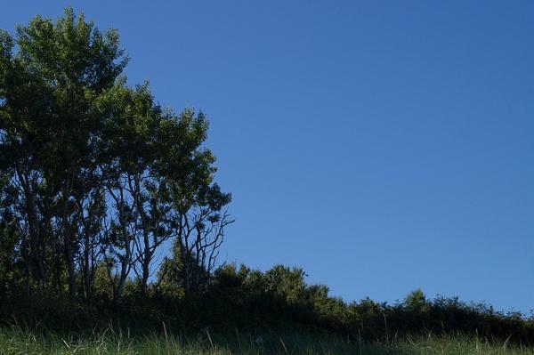 El paisaje by Lowdown