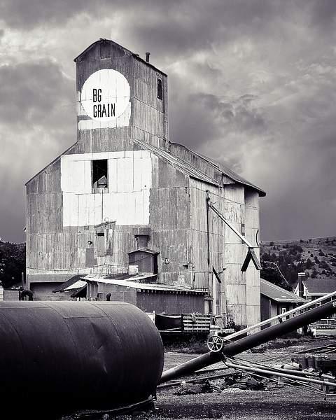 Big Grain 222