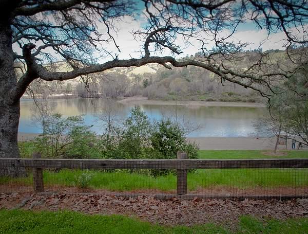 Lake Del Valle 222