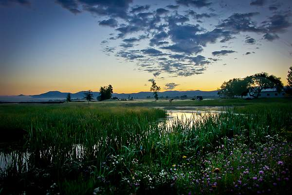 Montana Sunrise 222