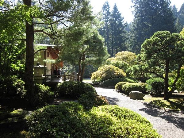Oregon Day 5 Rose Garden & Japanese Garden by KatyWolfe