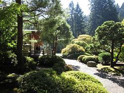 Oregon Day 5 Rose Garden & Japanese Garden