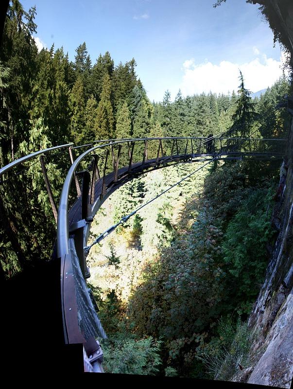 Vancouver 420 Suspension Bridge - Skywalk