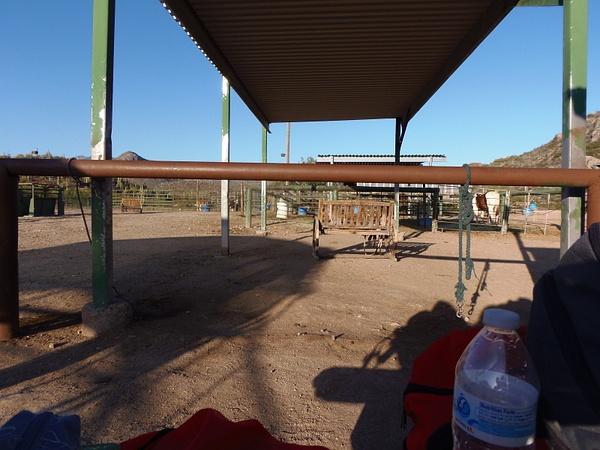 Arizona 2015 by GreensboroMontessori