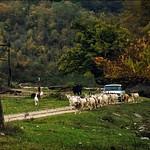 VeloAbkhazia 2013_Bagnary - Canion of Tzandripsh river