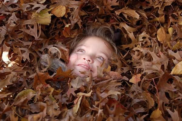 Leaves_0181 222