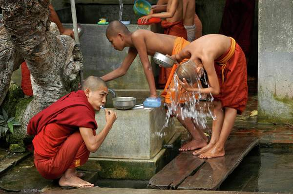 Young monks washing up before breakfast, Burma