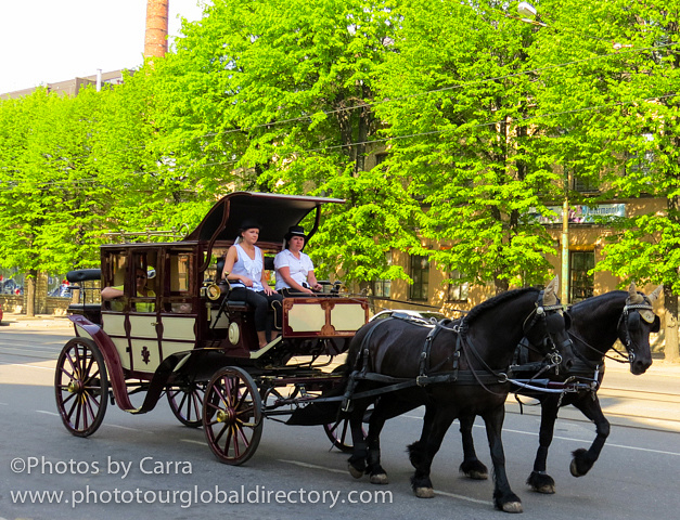 E horse and buggy