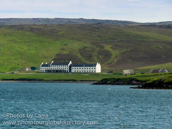 Shetland by Carra Riley