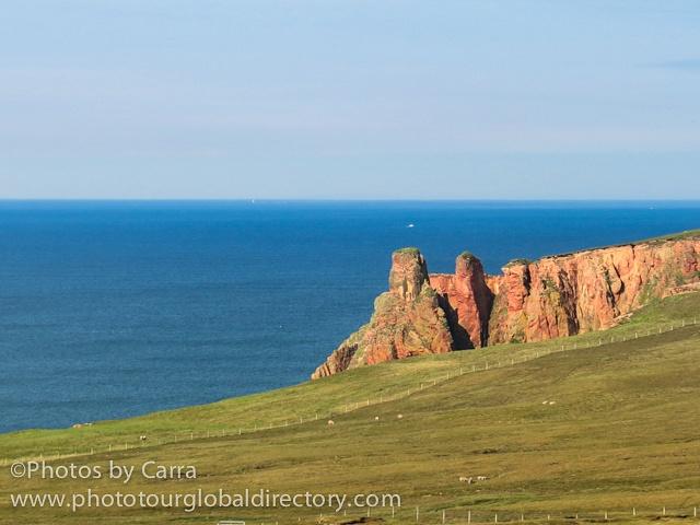 Shetland coast 5