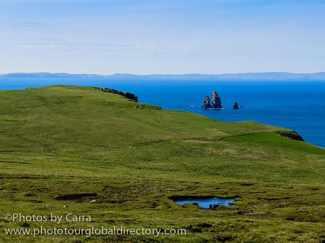 Shetland coast 11