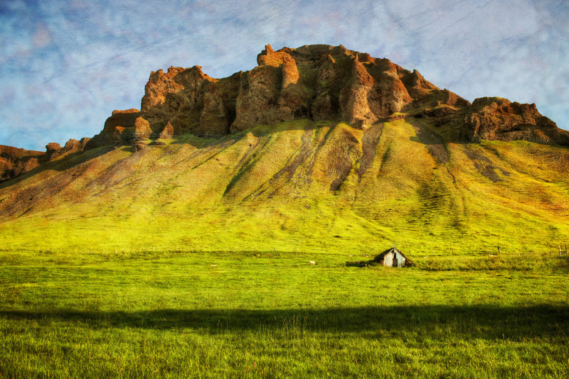 The Lonely Grass House
