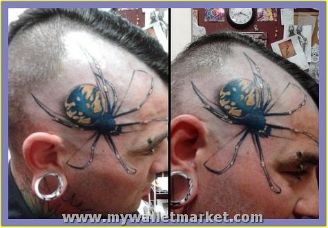 3d-spider