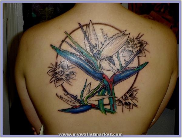 hawaiian-flower-tattoos-07 by catherinebrightman