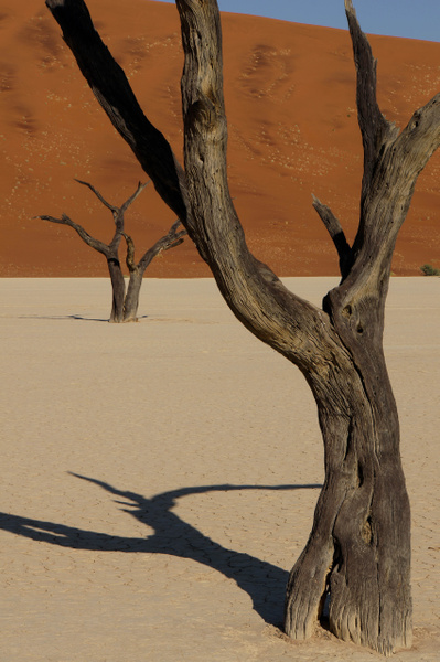 NAMIBIA 2013 by Greg Vickers