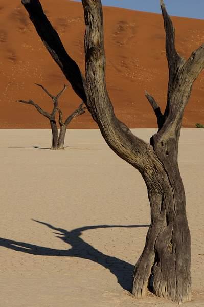 Sossus Vlei, Namibia 2013