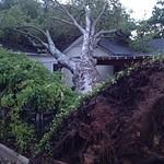 May 7, 2012 Storm Damage