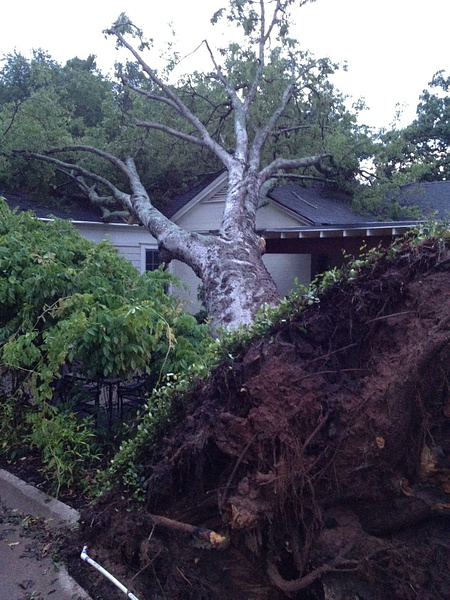 May 7, 2012 Storm Damage by Reagan McLemore by Reagan McLemore
